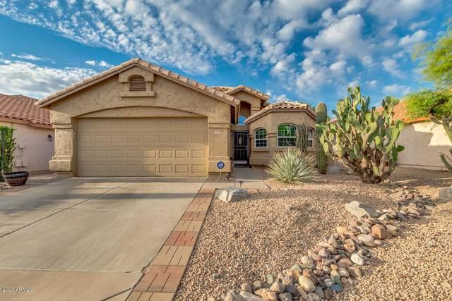 2238 E Williams Drive, Phoenix, AZ 85024 (MLS #6082259) :: Devor Real Estate Associates