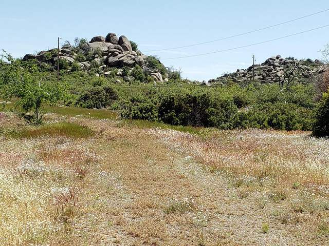 17563 W Foothill - 2 Road, Yarnell, AZ 85362 (MLS #6082261) :: neXGen Real Estate