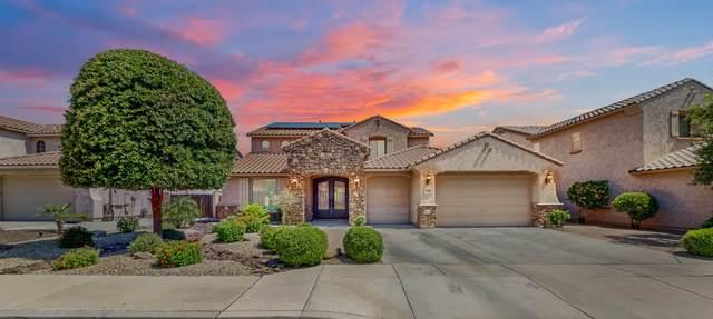 18142 W Orchid Lane, Waddell, AZ 85355 (MLS #6082262) :: Revelation Real Estate