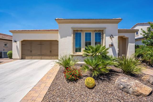 1620 E Sattoo Way, Queen Creek, AZ 85140 (MLS #6082266) :: Power Realty Group Model Home Center
