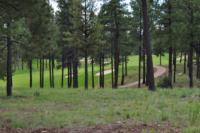 3883 S Clubhouse Circle, Flagstaff, AZ 86005 (MLS #6082295) :: neXGen Real Estate