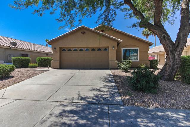1713 E Gail Drive, Chandler, AZ 85225 (MLS #6082297) :: Conway Real Estate