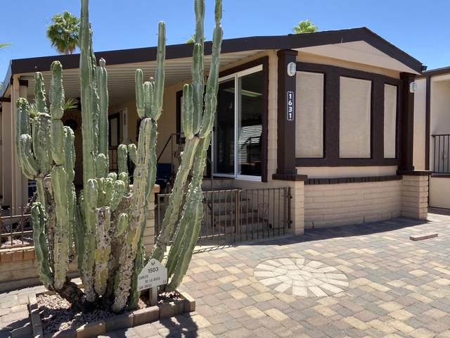 1503 W Yuma Avenue, Apache Junction, AZ 85119 (MLS #6082309) :: Conway Real Estate