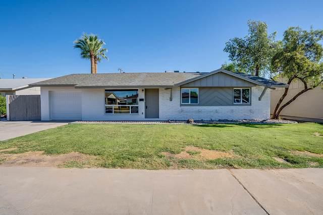 3719 W Cactus Wren Drive, Phoenix, AZ 85051 (MLS #6082329) :: Nate Martinez Team