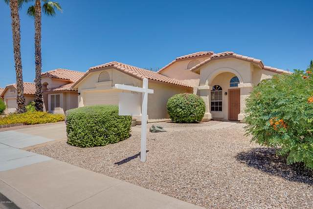 5962 W Mercury Way, Chandler, AZ 85226 (MLS #6082379) :: Kepple Real Estate Group