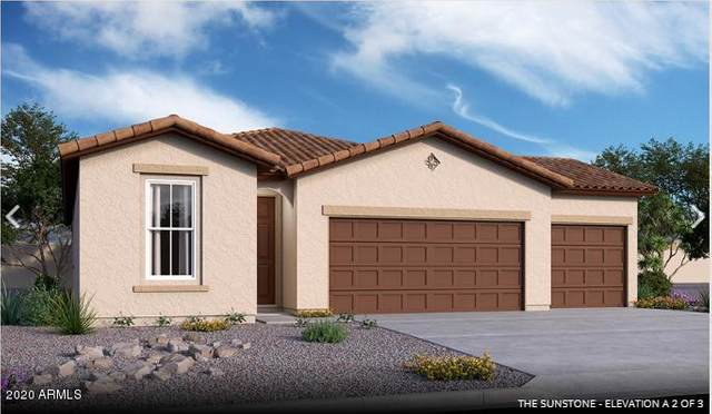 13342 W Paso Trail, Peoria, AZ 85383 (MLS #6082401) :: The Everest Team at eXp Realty