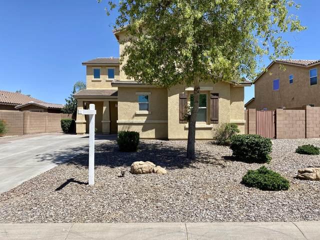 1084 W Deoni Trail, San Tan Valley, AZ 85143 (MLS #6082405) :: Power Realty Group Model Home Center