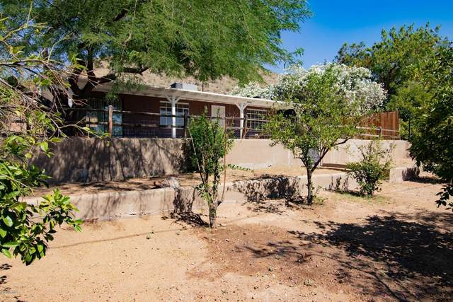 10841 N 14TH Avenue, Phoenix, AZ 85029 (MLS #6082408) :: NextView Home Professionals, Brokered by eXp Realty