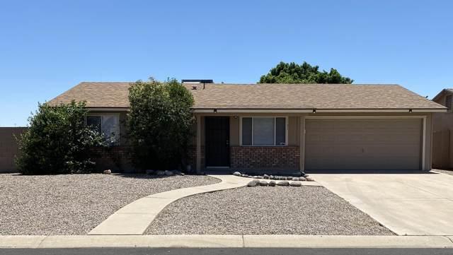 7933 E Gale Avenue, Mesa, AZ 85209 (MLS #6082417) :: Balboa Realty