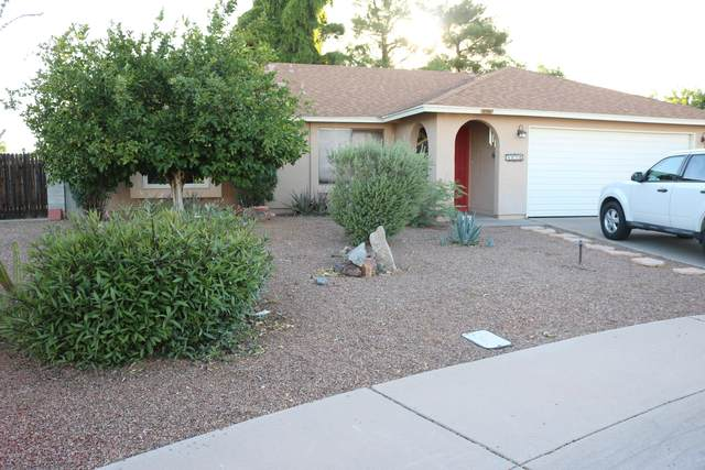 4020 W Woodridge Drive, Glendale, AZ 85308 (MLS #6082438) :: Kepple Real Estate Group