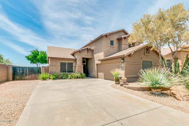 25802 N Hackberry Drive, Phoenix, AZ 85083 (MLS #6082439) :: NextView Home Professionals, Brokered by eXp Realty