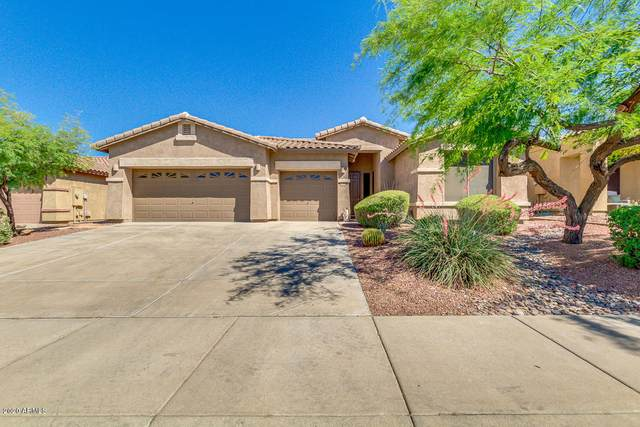 18455 W Western Star Boulevard, Goodyear, AZ 85338 (MLS #6082456) :: Selling AZ Homes Team