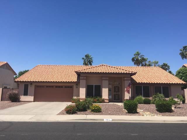 2914 E Mallory Street, Mesa, AZ 85213 (MLS #6082522) :: Lucido Agency