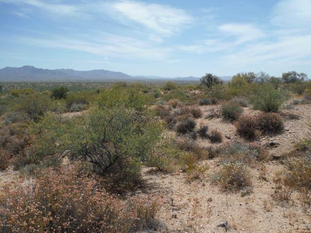 4.8 Acres La Mancha Subdivision, Congress, AZ 85332 (MLS #6082523) :: The W Group