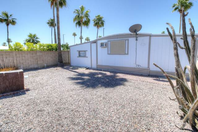 11101 E University Drive #14, Apache Junction, AZ 85120 (MLS #6082528) :: The C4 Group
