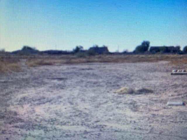 7085 W Gelding Lane, Coolidge, AZ 85128 (MLS #6082534) :: The Daniel Montez Real Estate Group