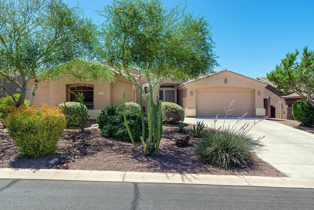 8169 E Sweet Bush Lane, Gold Canyon, AZ 85118 (MLS #6082564) :: Lucido Agency