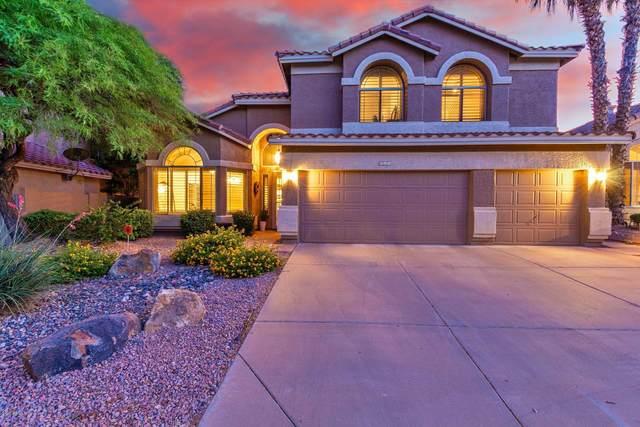 911 E Mountain Vista Drive, Phoenix, AZ 85048 (MLS #6082586) :: Lifestyle Partners Team