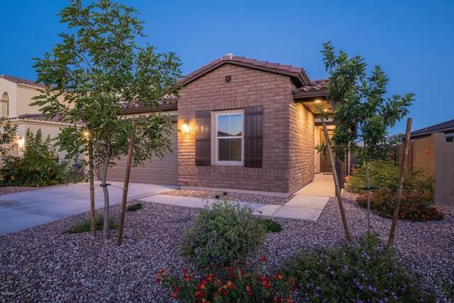 713 S 201ST Lane, Buckeye, AZ 85326 (MLS #6082636) :: Brett Tanner Home Selling Team