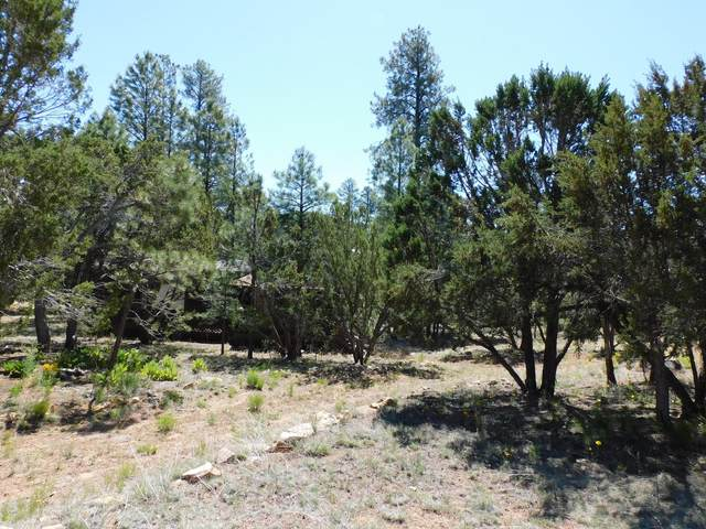 2959 Valley Frg, Overgaard, AZ 85933 (MLS #6082651) :: Revelation Real Estate