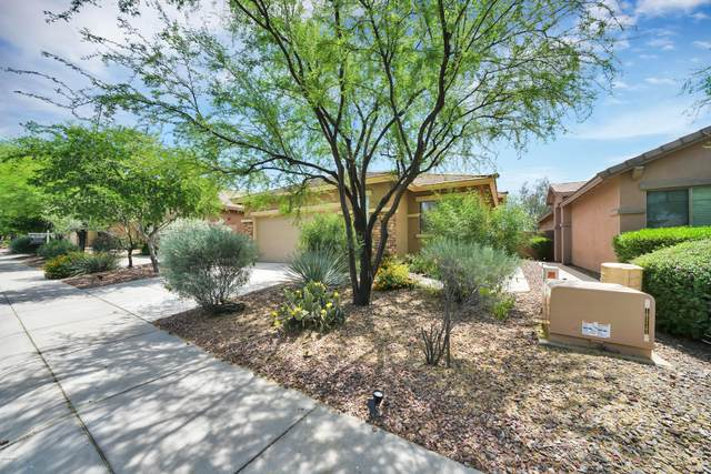 1663 W Morse Drive, Anthem, AZ 85086 (MLS #6082710) :: Revelation Real Estate