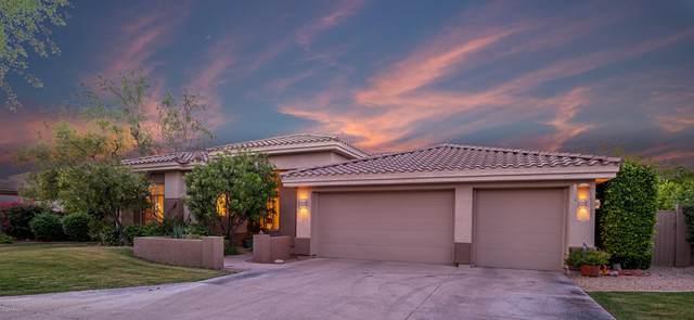 12141 E San Simeon Drive, Scottsdale, AZ 85259 (MLS #6082744) :: REMAX Professionals