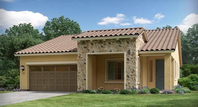 20364 W Calle Encorvada Avenue, Buckeye, AZ 85396 (MLS #6082792) :: Maison DeBlanc Real Estate
