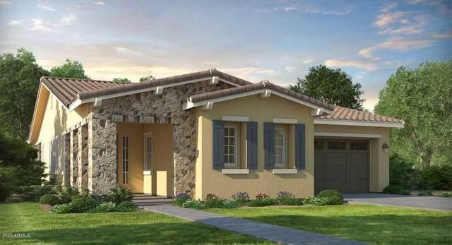 4916 N 207TH Avenue, Buckeye, AZ 85396 (MLS #6082800) :: Arizona Home Group