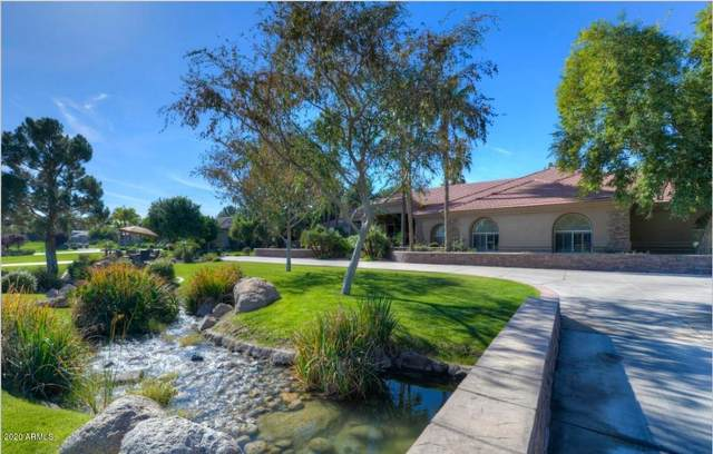 3 E Oakwood Hills Drive, Chandler, AZ 85248 (MLS #6082827) :: Revelation Real Estate