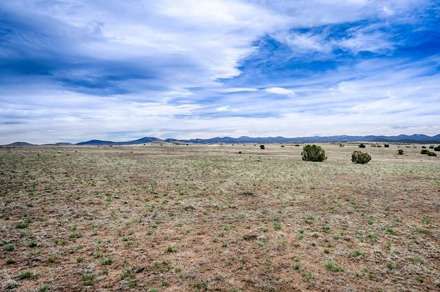 3 W Lake View Ranch Road, Concho, AZ 85924 (MLS #6082832) :: RE/MAX Desert Showcase