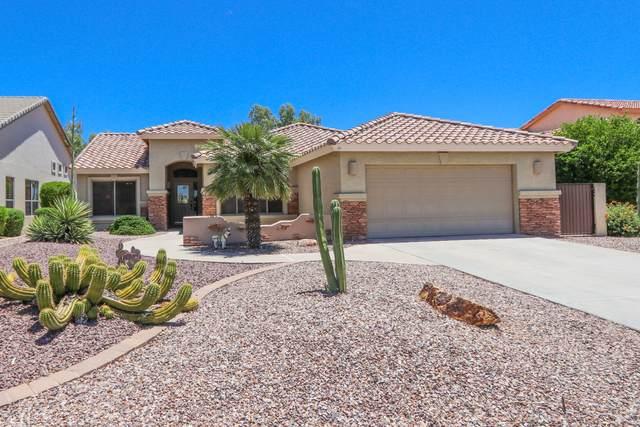 24317 S Angora Drive, Sun Lakes, AZ 85248 (MLS #6082867) :: Devor Real Estate Associates