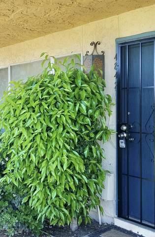4842 W Rose Lane, Glendale, AZ 85301 (MLS #6082907) :: The Daniel Montez Real Estate Group