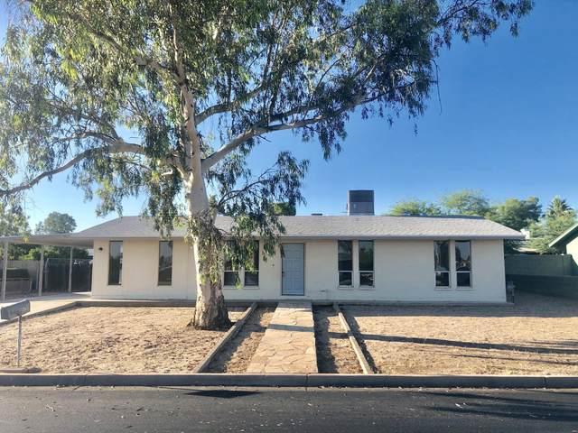 9620 E Quarterline Road, Mesa, AZ 85207 (MLS #6082933) :: Kepple Real Estate Group