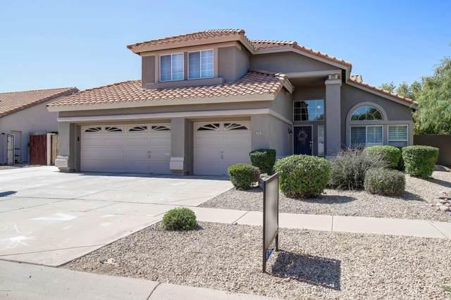 3061 W Ironwood Circle, Chandler, AZ 85226 (MLS #6082940) :: Dijkstra & Co.