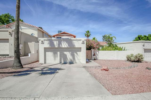 1648 E Villa Maria Drive, Phoenix, AZ 85022 (MLS #6082952) :: Kepple Real Estate Group