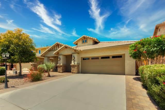 310 E Red Mesa Trail, San Tan Valley, AZ 85143 (MLS #6082957) :: The Helping Hands Team