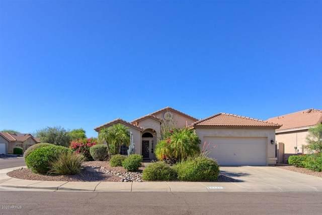 4216 E Molly Lane, Cave Creek, AZ 85331 (MLS #6082964) :: Yost Realty Group at RE/MAX Casa Grande