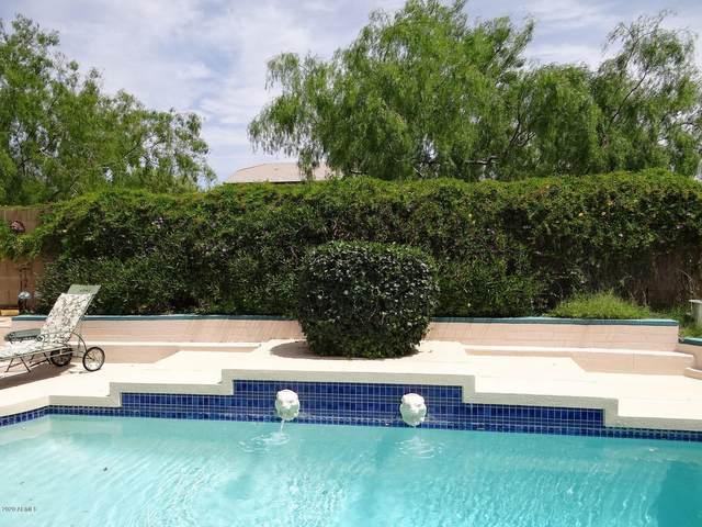 933 N Sericin Circle, Mesa, AZ 85205 (MLS #6082965) :: Lux Home Group at  Keller Williams Realty Phoenix