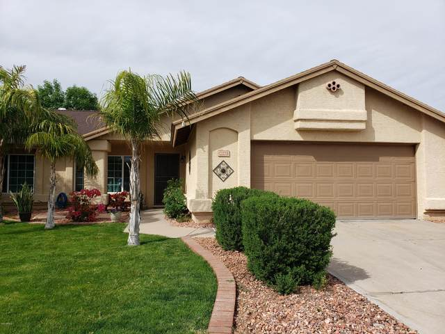 8342 W Dreyfus Drive, Peoria, AZ 85381 (MLS #6082967) :: Lux Home Group at  Keller Williams Realty Phoenix