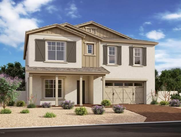10150 E Supernova Drive, Mesa, AZ 85212 (MLS #6083027) :: Yost Realty Group at RE/MAX Casa Grande