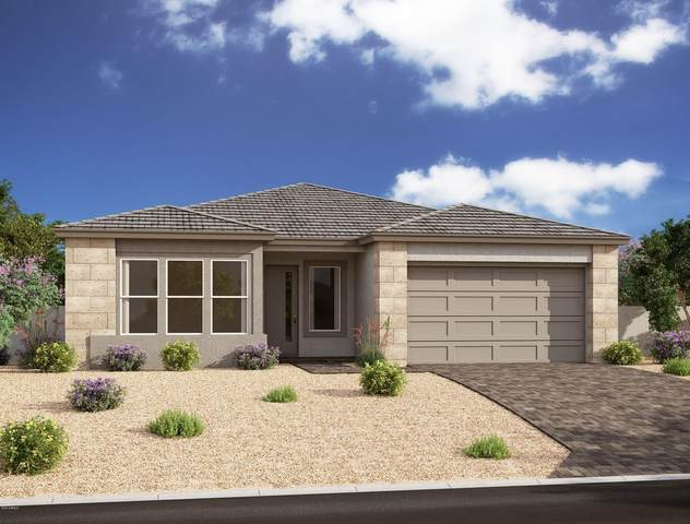 10111 E Strobe Avenue, Mesa, AZ 85212 (MLS #6083031) :: Lucido Agency