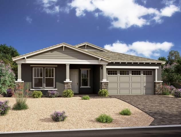 4203 S Apollo, Mesa, AZ 85212 (MLS #6083036) :: Yost Realty Group at RE/MAX Casa Grande