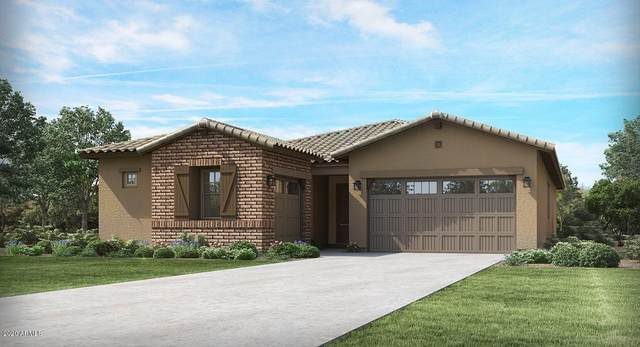 9533 W Getty Drive, Tolleson, AZ 85353 (MLS #6083037) :: The Everest Team at eXp Realty