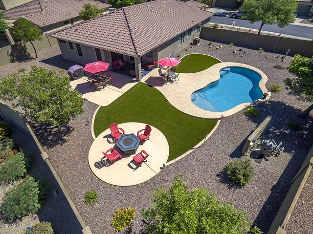 39718 N Bridlewood Way, Phoenix, AZ 85086 (MLS #6083057) :: Revelation Real Estate