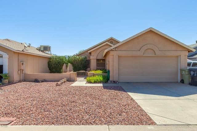 7333 N 69TH Avenue, Glendale, AZ 85303 (MLS #6083081) :: Lux Home Group at  Keller Williams Realty Phoenix