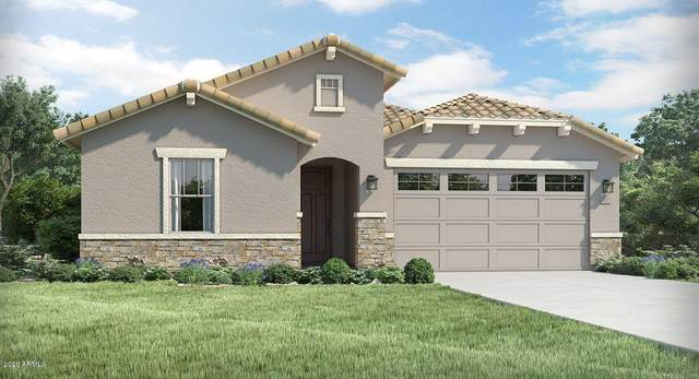 9535 W Encinas Lane, Tolleson, AZ 85353 (MLS #6083083) :: The Everest Team at eXp Realty