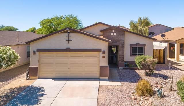 1733 E Desert Rose Trail, San Tan Valley, AZ 85143 (MLS #6083088) :: Lux Home Group at  Keller Williams Realty Phoenix