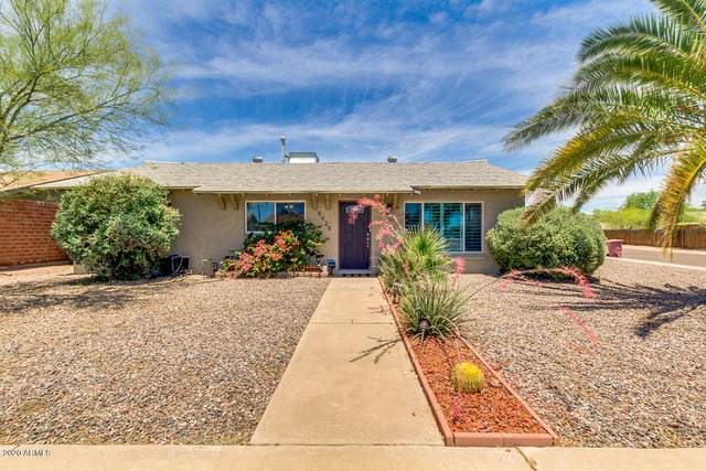 8428 E Verde Lane, Scottsdale, AZ 85251 (MLS #6083096) :: The Daniel Montez Real Estate Group