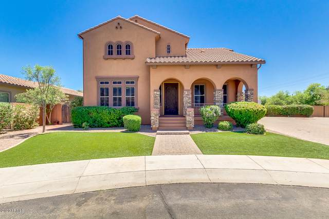 5961 S Cambridge Street, Chandler, AZ 85249 (MLS #6083118) :: Lux Home Group at  Keller Williams Realty Phoenix