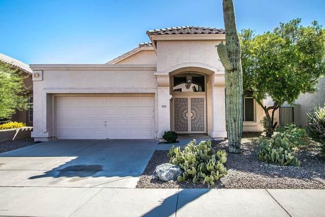 16622 S 14th Place, Phoenix, AZ 85048 (MLS #6083135) :: The Daniel Montez Real Estate Group